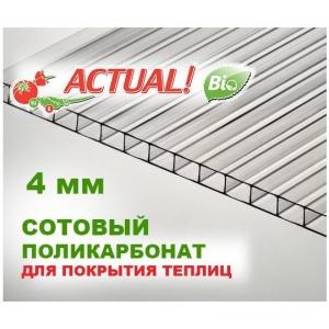 """Сотовый поликарбонат 4мм прозрачный """"Актуаль Био"""""""
